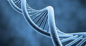 25 Kickass And Interesting Facts About Genetics