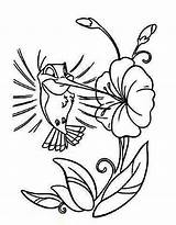 Hummingbird Cartoon Coloring Printable Bird Humming Drawing Hummingbirds Drawings Flower Colors Cliparts Sheets Clip Animal Library Clipart Kidsplaycolor Line Embroidery sketch template