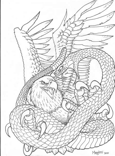 Realistic Eagle Drawing   Snake Vs Eagle Picture   Snake