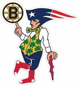 BOSTON Fan Sport Flag Logo Vinyl Sticker Decal Bruins