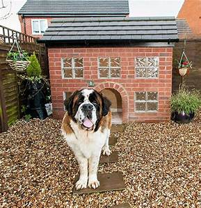 41 cool luxury dog houses for your pooch With saint bernard dog house
