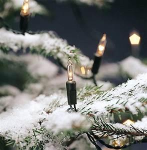 Trafo Für Lichterkette : mini lichterkette f r au en mit 24v trafo lichterkette ohne led mit 40 80 oder 120 klaren ~ Eleganceandgraceweddings.com Haus und Dekorationen