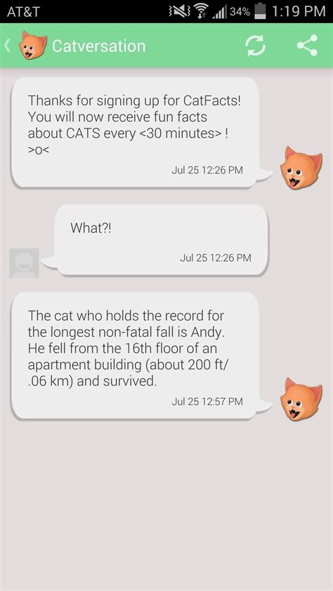 random phone numbers to text how to prank your friends with random cat facts text