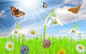 Free Spring Backgrounds Desktop