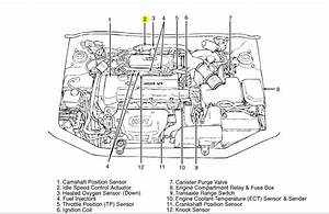 Hyundai Elantra Engine Diagram