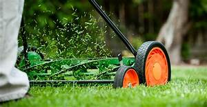 Beginners Guide To Maintaining Your Lawn  U0026 Yard