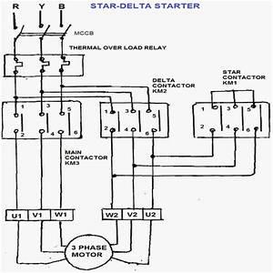 Manual Star Delta Starter Circuit Diagram