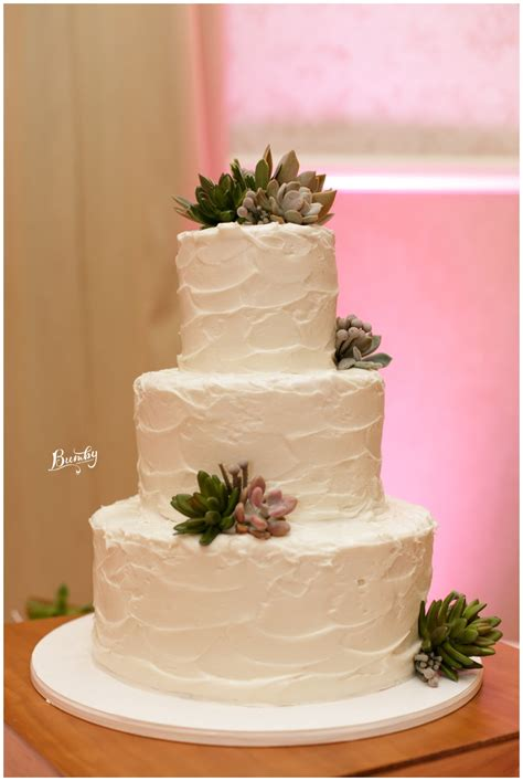 Succulent Wedding Cake St Augustine Wedding Photographer