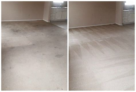 carpet and upholstery cleaning before and after pics a team carpet clean