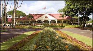 Dole Plantation- Oahu | Been There, Done That | Pinterest