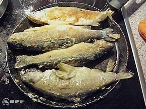 Risotto Mit Fisch : gem serisotto mit fisch rezept mit bild von borg ~ Lizthompson.info Haus und Dekorationen