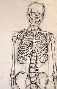 I always loved drawing skeletons in Life Drawing in ...