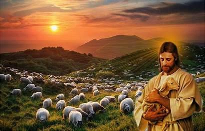 Jesus Christ Wallpapers Background Desktop Shepherd