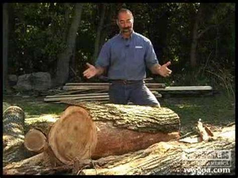 woodworking diy tips cutting lumber  logs youtube