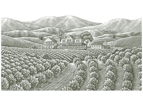 Steven Noble Illustrations Coffee Plantation. Funny Workout Quotes. Sister Love Quotes Tumblr. Fashion Editor Quotes. Quotes About Good Change Tumblr. Love Quotes Girl. Marilyn Monroe Quotes Vinyl Wall Art. Quotes About The Strength Of The United States. Bible Quotes Worry