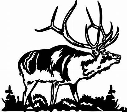 Elk Bull Dxf Deer Clip Clipart Hunting