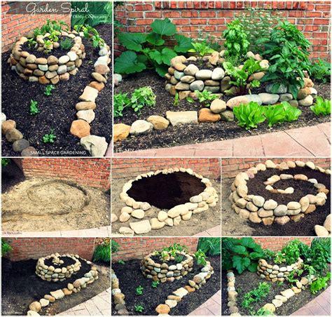diy home vegetable garden oune anarchy artichokes
