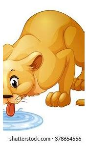 Animal Drinking Water Images, Stock Photos & Vectors ...