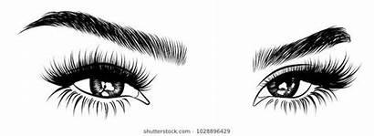 Lashes Eyelash Eye Shaped Eyelashes Eyebrows Colorful