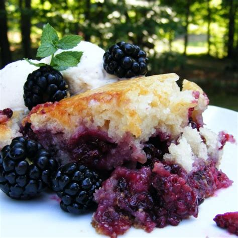 desserts using blackberries baron s blackberry cobbler photos allrecipes com