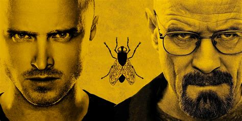 fly si鑒e social il miglior episodio di breaking bad è fly la mosca
