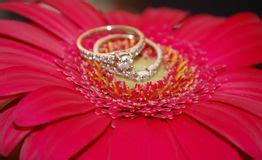 glamorous diamonds stock image image  rhinestones