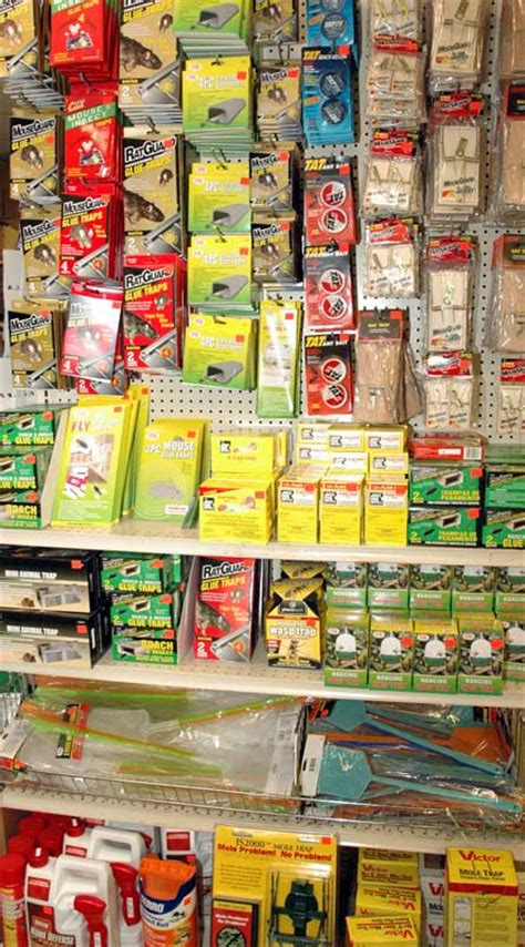 general merchandise bargain supply louisville ky
