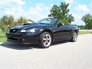 2001 Ford Mustang - Pictures - CarGurus