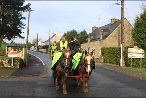 cheval territorial baud mairie collecte