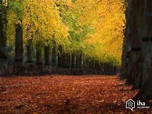 Foret De Sherwood : location midlands de l 39 est dans un mobil home pour vos ~ Voncanada.com Idées de Décoration