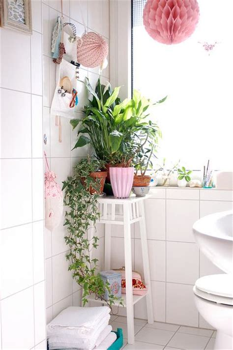 houseplants in decor feng shui nature the tao of