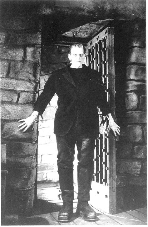 frankenstein quotes  page numbers quotesgram
