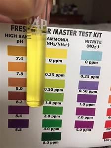 Hi I 39 M Trouble Reading The Ammonia Level On My Api