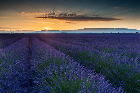 provence france wallpaper wallpapersafari