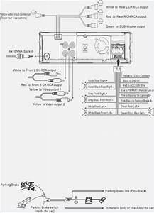 31 Bose Amp Wiring Diagram Manual