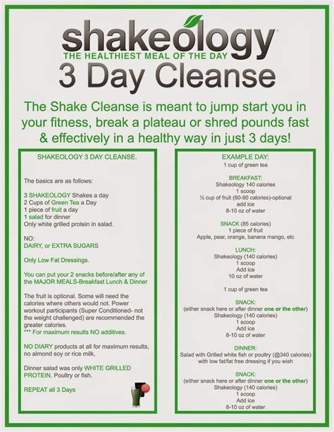 detox diät plan 21 tage 17 best ideas about 21 day cleanse on shakeology cleanse 21 day shake challenge and
