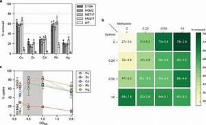 Strain  Culture Density  Od600   And Media Composition Effects On Metal