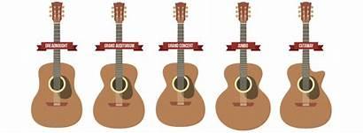 Guitar Acoustic Shapes Guitars Sizes Guide Basic