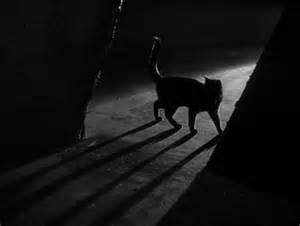 the black cat the black cat 1934 review pre code