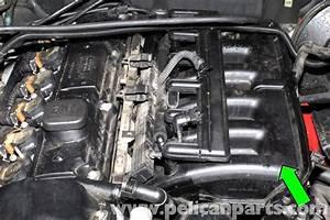 Bmw E46 Engine Management System