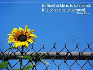 Life Quotes Wallpapers For Desktop. QuotesGram