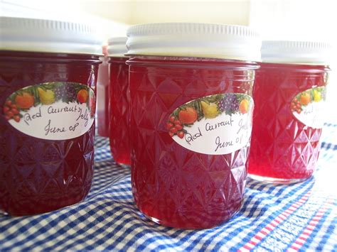 Red Currant Jelly Stool Picture