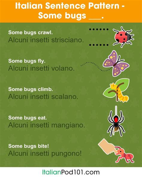 Pin by Steve Parker on Italiano   Learn french online ...