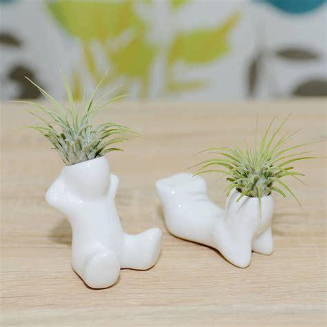 mini ceramic figure plant holder  air plant