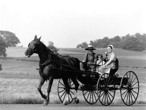 Amish Family Drives through the Countryside