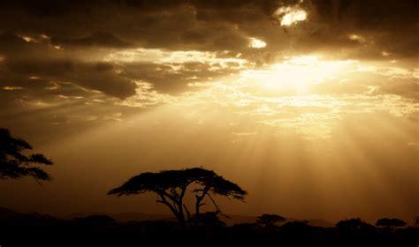 african savannah tanzania  personal photo blog