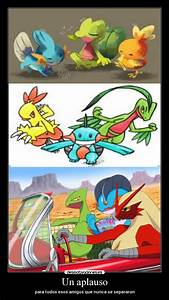 Mega Sceptile Swampert and Blaziken