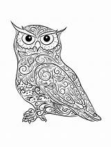 Owl Coloring Pages Adults Adult Printable Mycoloring Owls sketch template