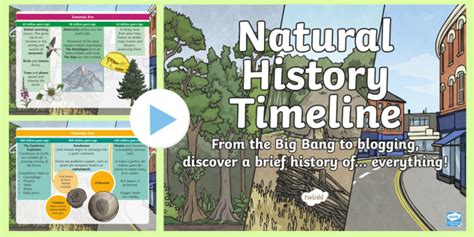 natural history timeline powerpoint earth big bang present day