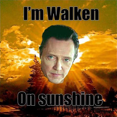Christopher Walken Memes 25 Best Images About Christopher Walken Memes On